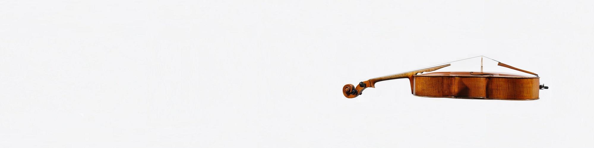 vioolhuren.nl viool - zijkant