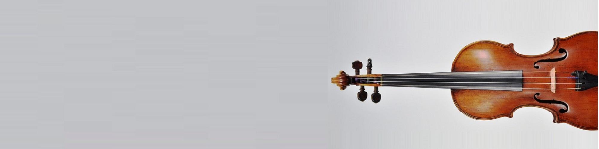 vioolhuren.nl viool